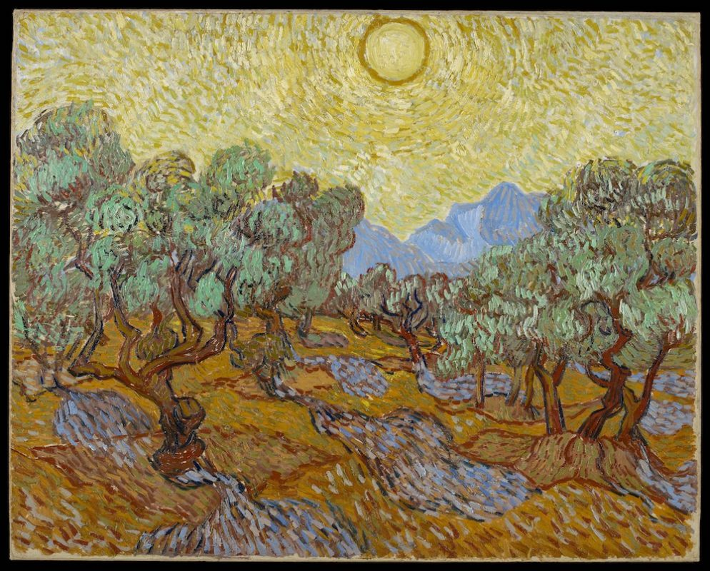 Van Gogh's Olive Trees