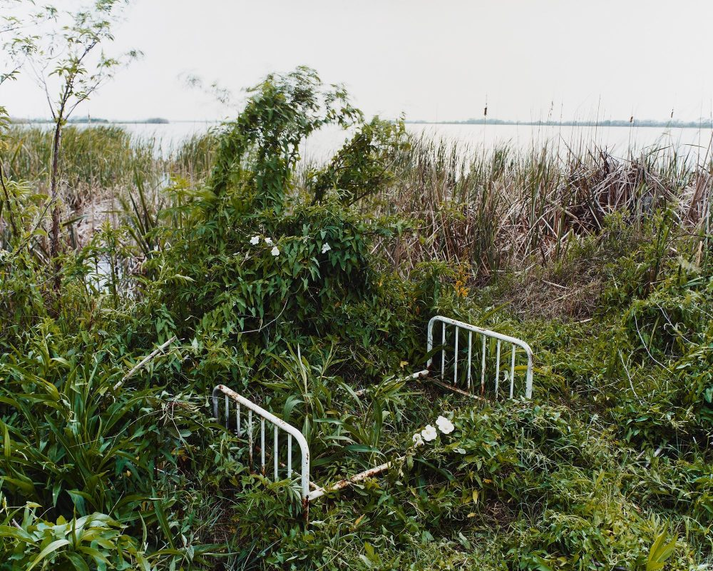A white, rusted bed frame lying outside in overgrown plants.