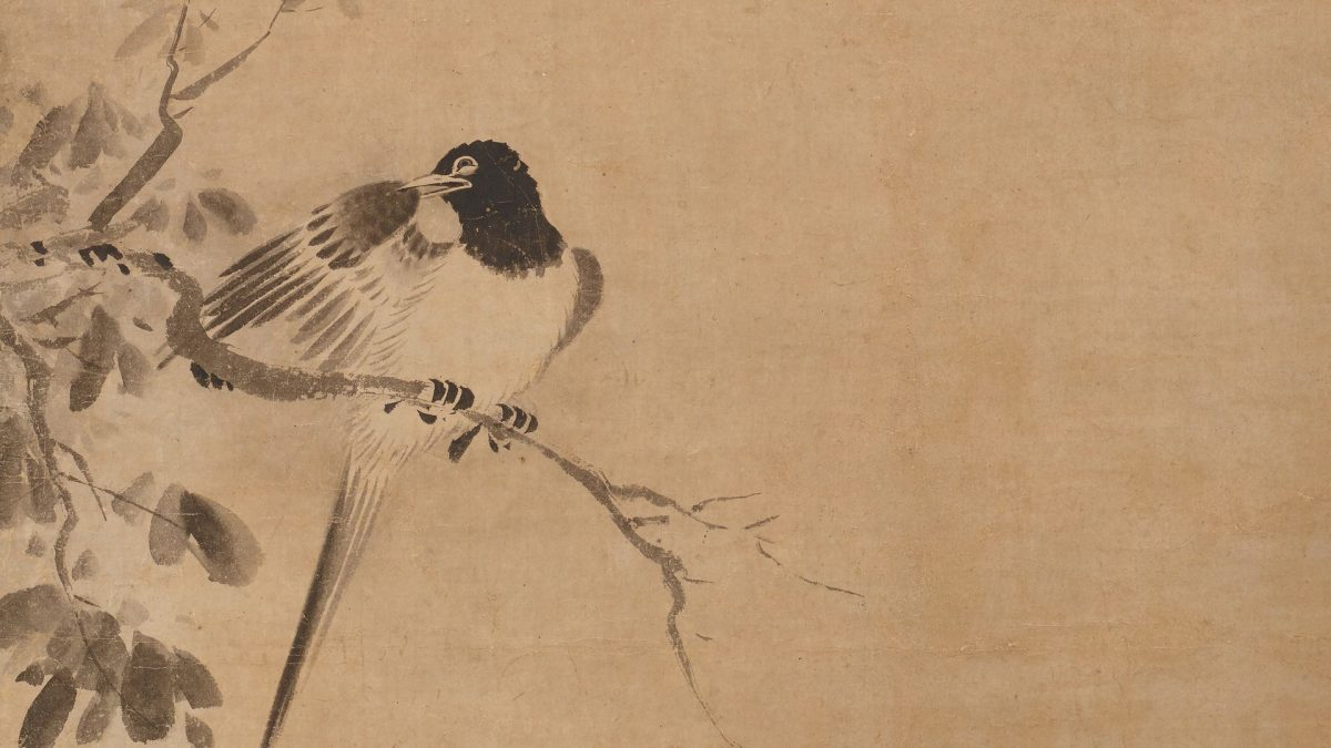 Ink painting of a bird sitting on a branch, cleaning its right wing.