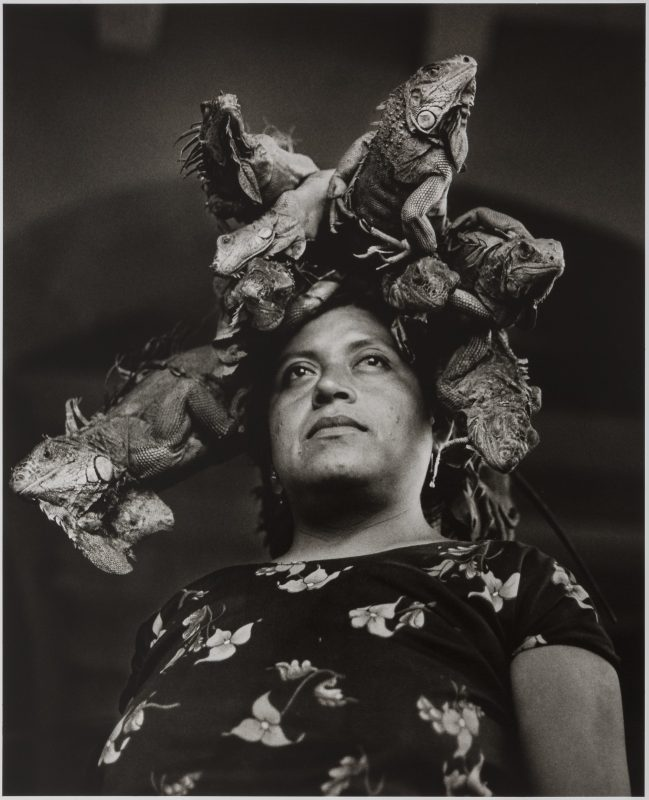 Nuestra Señora de las Iguanas (Our Lady of the Iguanas), Juchitán, México. Graciela Iturbide (Mexican, born in 1942). 1979. Photograph, gelatin silver print. Daniel Greenberg and Susan Steinhauser. © Graciela Iturbide. Courtesy, Museum of Fine Arts, Boston.