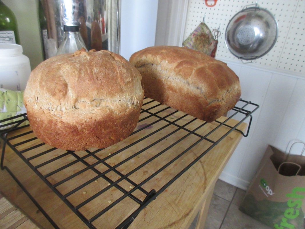 Loaves of bread made by Mia curator Bob Cozzolino.